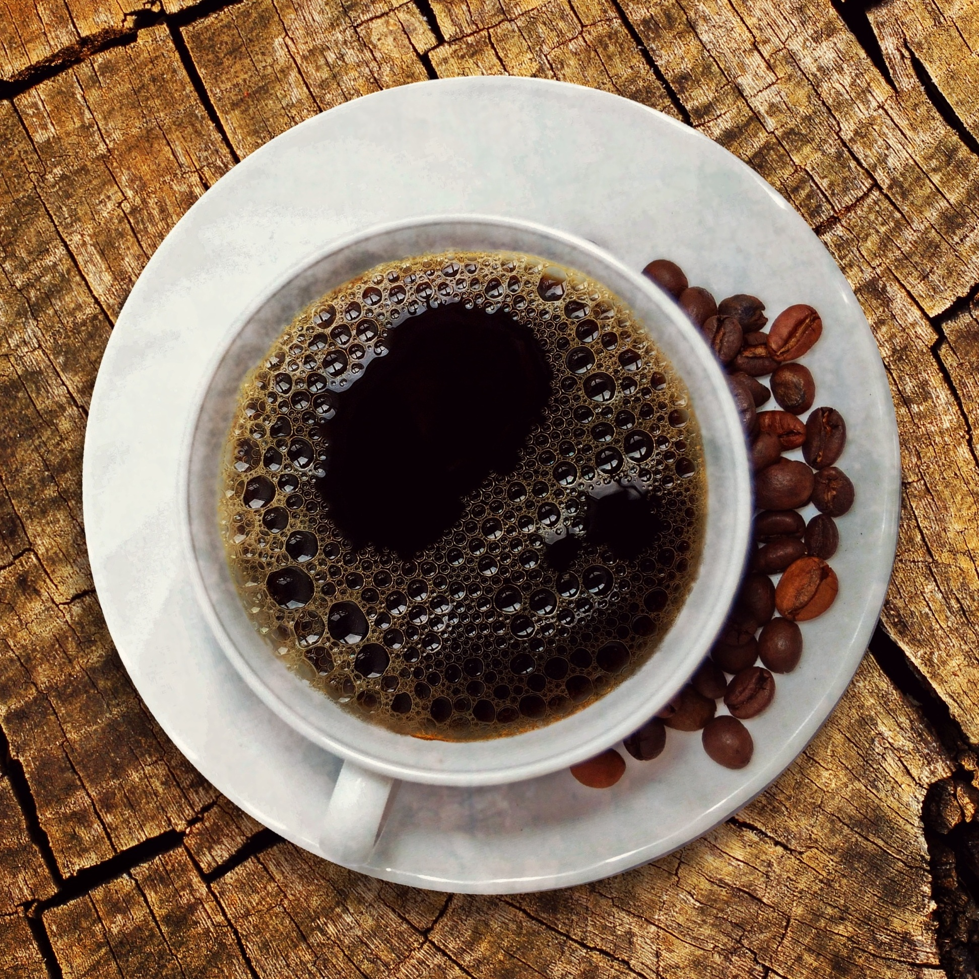 Science of Coffee